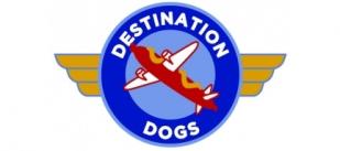 Destination Dogs